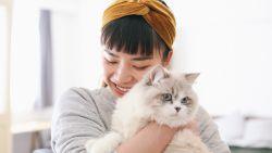 Hoe communiceer je met katten in hun taal?