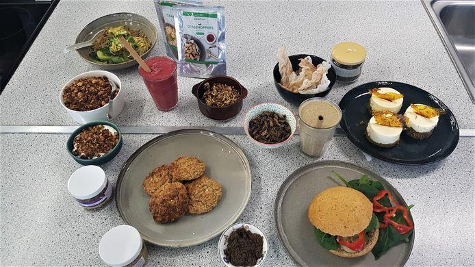 Van smoothies tot noedelsoep en cheesecake: de studenten tonen dat je uiteenlopende gerechten met insecten kan maken.
