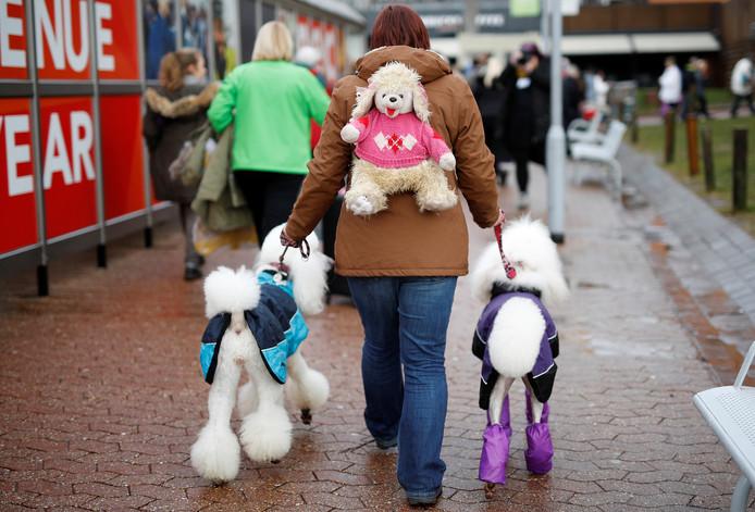 Een vrouw komt met haar poedels aan op de derde dag van de 'Crufts Dog Show' in het Engelse Birmingham. Foto Darren Staples/Reuters