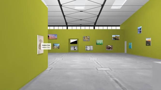 Van gedichten tot foto's: virtuele expo bundelt meer dan 250 'coronakunstwerken'