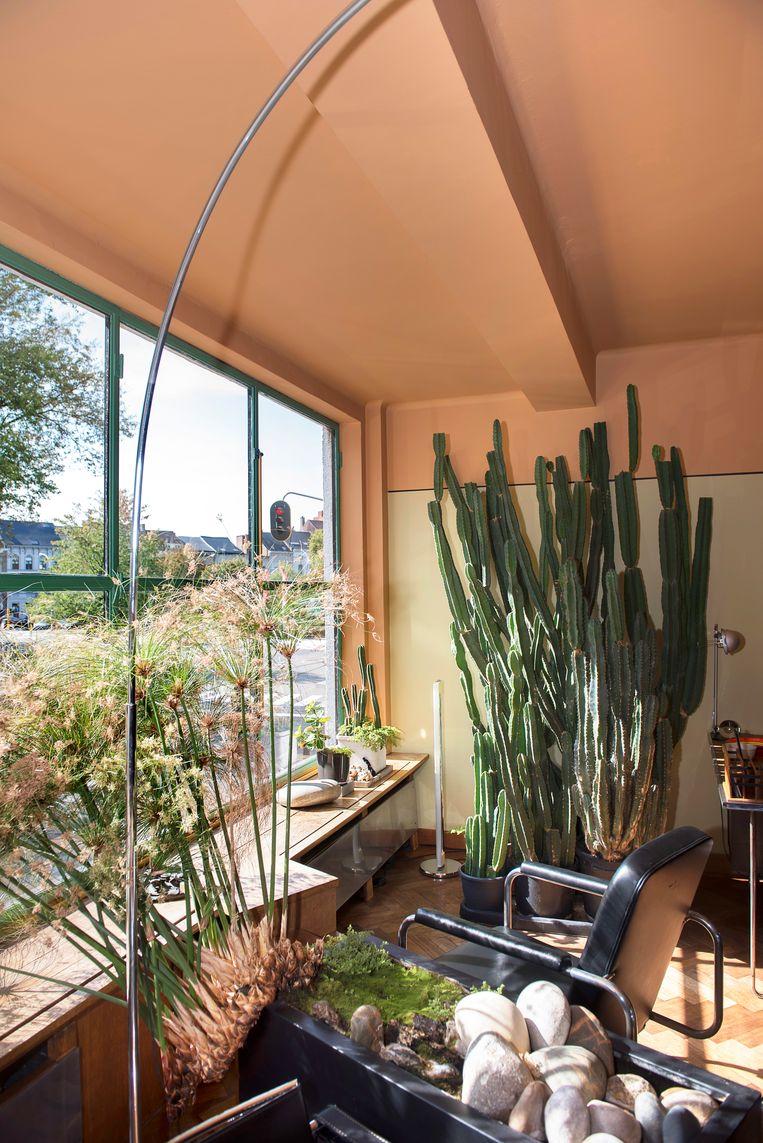 Planten zijn, na architectuur, de tweede passie van Jos.   Beeld Els Zweerink