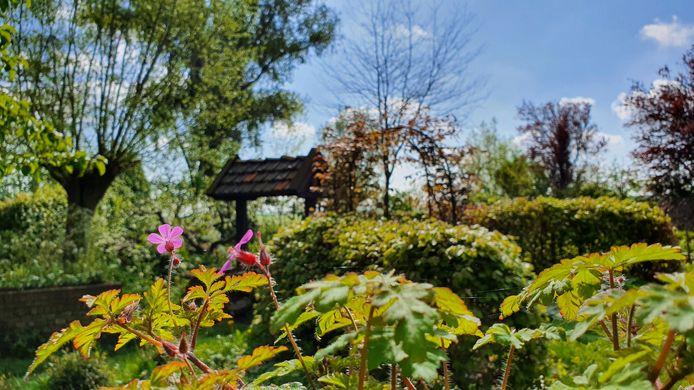 Een van de tuinen in het Duyls Bos.