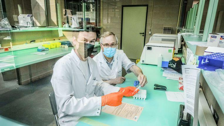 Moleculair laborant Aron Huysentruyt en dokter Dirk Bernard (rechts) labelen bij Labo Van Poucke in Kortrijk de stalen die zijn afgenomen. Beeld Henk Deleu