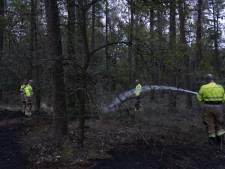 Opnieuw stuk natuur in brand aan Sambeeksedijk in Boxmeer