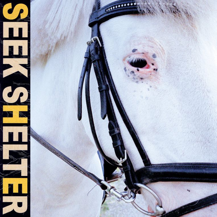 ICEAGE - Seek Shelter Beeld RV