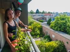 Bewoners willen af van fabriek die kippenvaccins maakt in Biltse woonwijk: 'Soms word je onpasselijk van de stank'