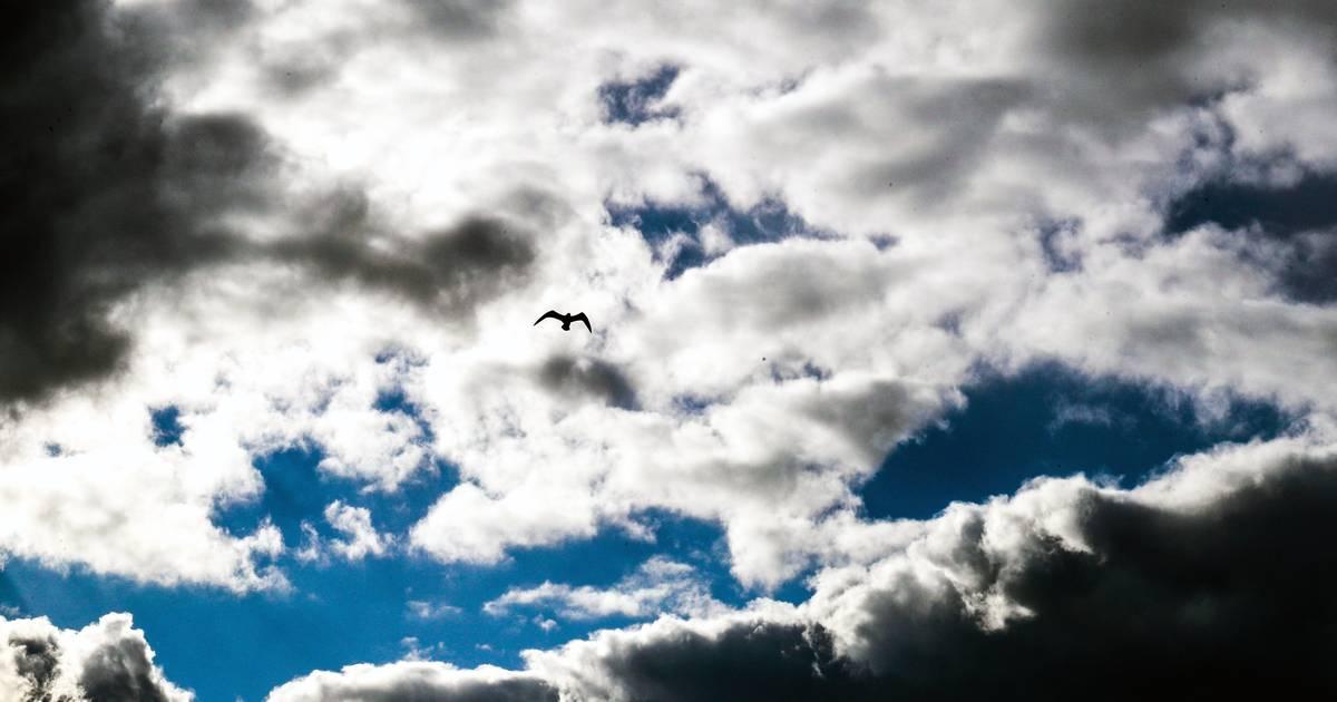 Du soleil et des températures moins froides ce dimanche avant l'arrivée des nuages - 7sur7