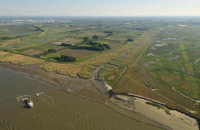 Op dit luchtbeeld is de Hedwigepolder te zien tussen het Verdronken Land van Saeftinghe (rechts) en de reeds ontpolderde Prosperpolder (links).