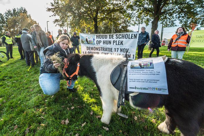 Eerder protest tegen de megaschool op de locatie van kinderboerderij en waterspeeltuin Tanthof.
