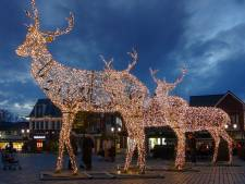 Winkeliers in Ermelo pakken kerstverlichting nu eens anders aan; adopteer een hert