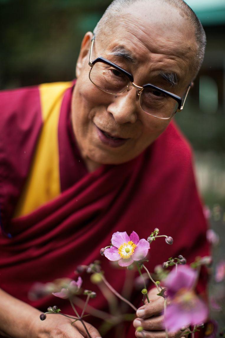 Portret van de 14de Dalai Lama, Tenzin Gyatso. Foto is genomen in het klooster waar de Dalai Lama al bijna 60 jaar leeft. Beeld Julius Schrank