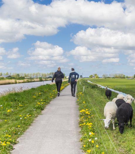 Vandaag is het Wandel tijdens je Werk-dag: waarom wandelen zo goed voor je is
