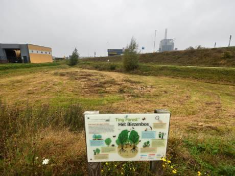 Blunder: eerste tiny forest van Nijmegen platgemaaid, 'binnen vijf minuten was alles weg'
