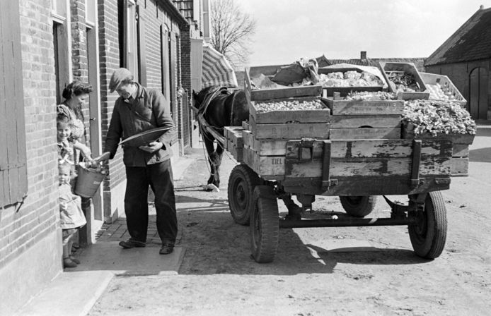 Berghemseweg jaren '50. Foto uit het stadarchief.