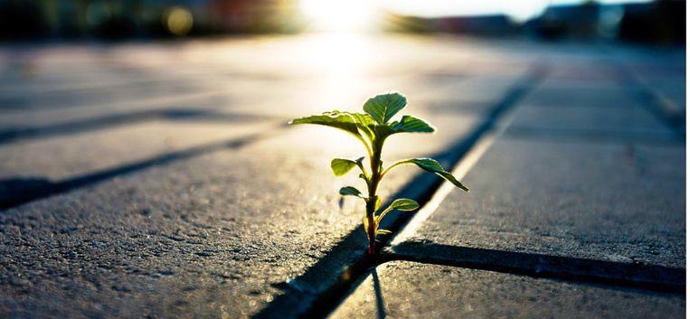 Waarom de kracht van hoop en positief denken zo belangrijk is