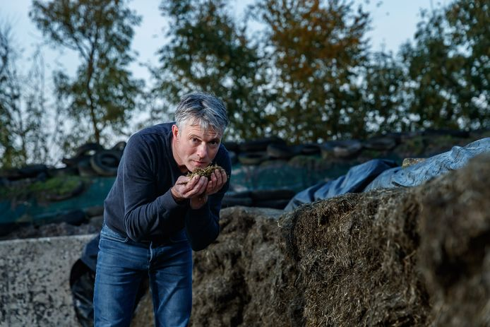 Rene Vermunt heeft een veeteeltbedrijf in de polder tussen Etten-Leur en Zevenbergen.