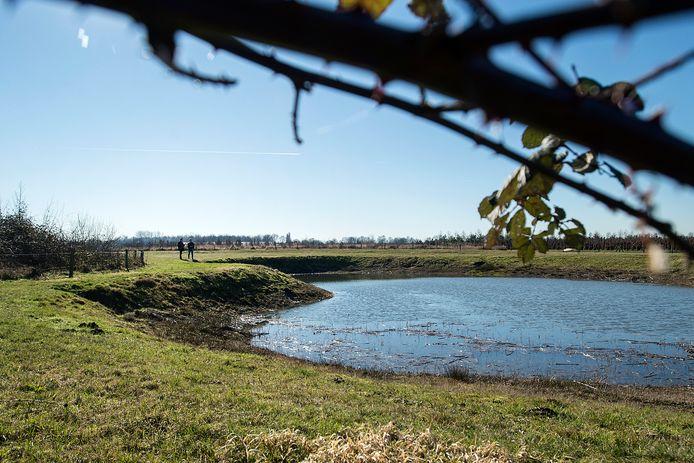 Ecologische verbindingszone in het buitengebied bij Bavel, zoals aan de Blookweg. onderdeel is een poel die uitermate geschikt is voor boomkikkers.