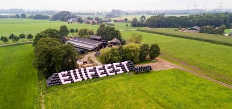 Opnieuw vernieling bij Euifeest in Hasselt; ook aanhouding voor mishandeling