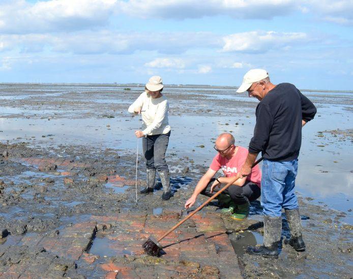 Opgravingen in het verdronken dorp Tolsende, in de Oosterschelde bij Yerseke