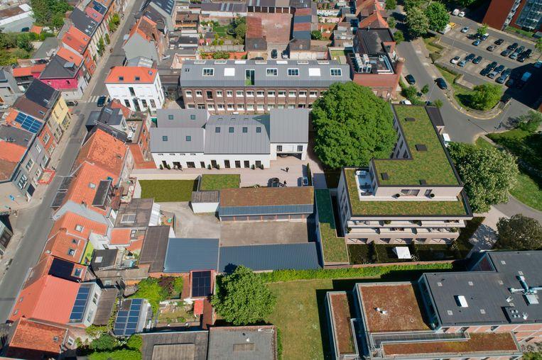 Groendaken in Gent. Beeld RV / arteveldevastgoedenbouw