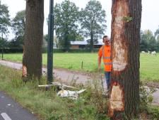 Vrachtwagen raakt van de weg en botst tegen twee bomen in Helvoirt