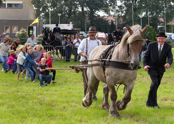 Een open dag van menvereniging In Stap en Draf op de terrein De Hietmaat in Hengelo. Archieffoto.