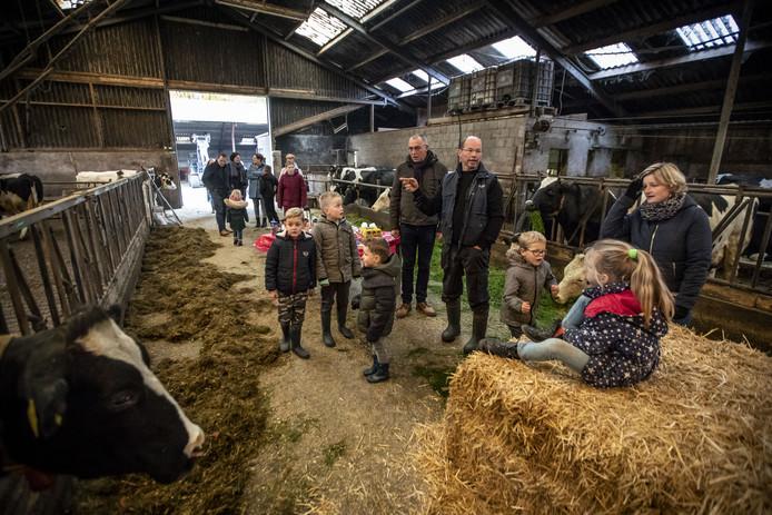 Kijkje in de stal van melkveehouderij Scholten Linde. De enige overgebleven boer in de buurtschap Hanstiehook in Hezingen kreeg onlangs bezoek van de Kinderkerk tijdens het diaconaal weekeinde met het thema Hart voor Boeren.