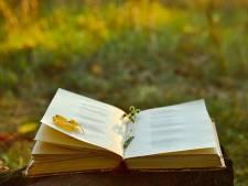 Nieuwkuijk vol poezië en muziek