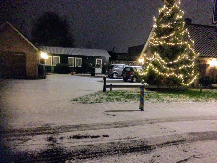 Winterwonderland in Wijk en Aalburg met een wel heel grote versierde boom.