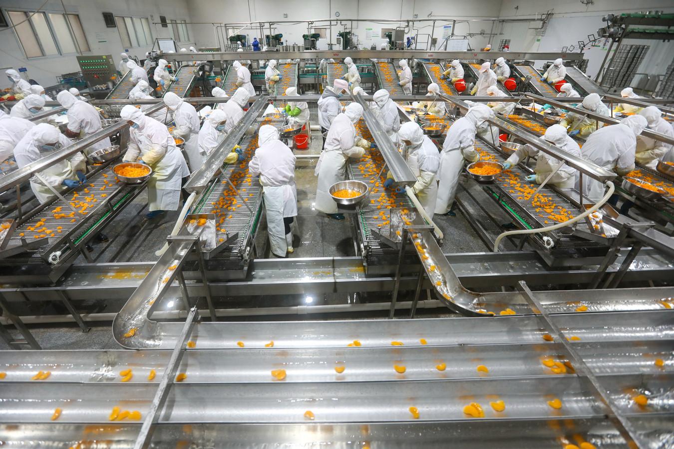 Productiemedewerkers verwerken sinaasappels die worden ingeblikt in een fabriek in het Chinese Huaibei. De Chinese economie heeft geen last meer van de coronacrisis.