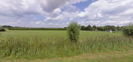 Plannen voor voedselbos in Den Hout zijn 'bijna rond'