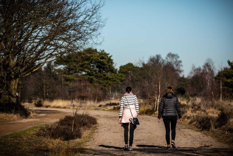 Wandelaars in het natuurgebied De Strabrechte Heide. Beeld ANP