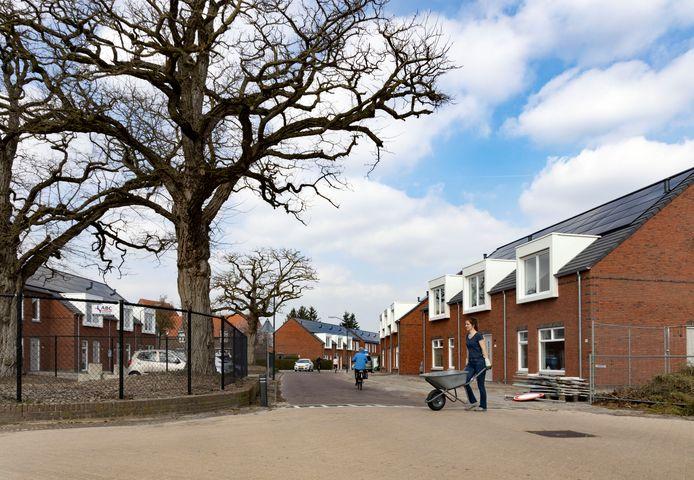De 25 nieuwbouwhuizen aan de Michiel de Ruyterstraat in Aalst zijn Nul op de Meter (NOM) woningen.