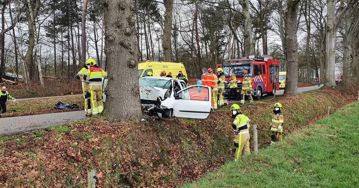Bestuurder komt om het leven bij eenzijdig ongeval in Overasselt.