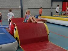 Aapjes rennen, klimmen en klauteren tijdens Bossche Apenkooikampioenschappen
