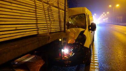 Bestelwagen knalt op stilstaande vrachtwagen, hond op passagierszetel overleeft klap niet