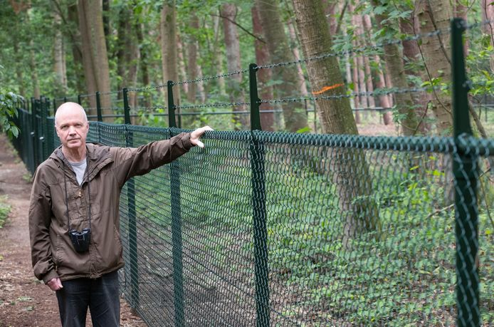 Erik Wesselius van Stichting Milieuwerkgroepen Ede (SME) bij de hoge hekken in het Bennekomse bos. 'Ik vrees dat hier gras wordt aangelegd en dat daarvoor bomen worden gekapt.'