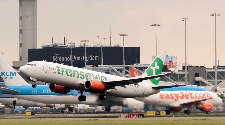 Een vliegtuig van Transavia (dochteronderneming KLM) stijgt op vanaf Schiphol terwijl hij een vliegtuig van concurrent EasyJet passeert.  Beeld Hollandse Hoogte / Marcel Antonisse