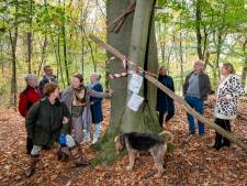 Bewoners Schaarsbergen protesteren fel tegen 'kaalslag' landgoed Warnsborn