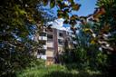 Het groen bij Rhederhof in betere tijden.
