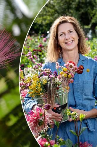 Ons klimaat wordt steeds warmer: tuinexperte toont welke exotische bloeiers voortaan ook bij ons overleven