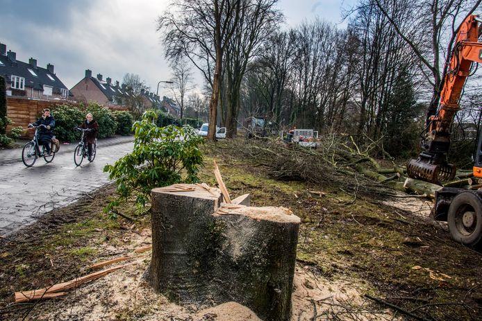 Jan van Eijndhoven / Beeld Werkt