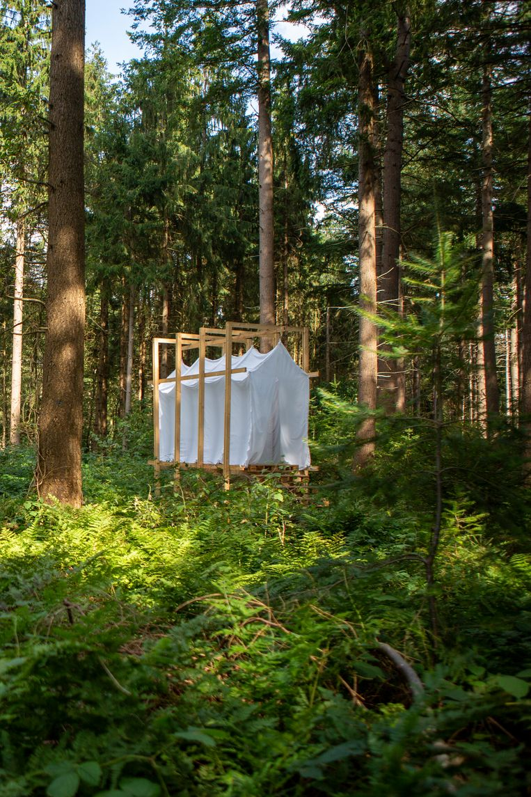 Landschap vanHerinneringen (Folly Art Norg, 2019). van Erik Geerts.  Beeld Edith Gerritsma