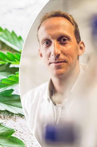 """Cannabisolie: een legale pijnbestrijder of een dure placebo?: """"Het mag in principe alleen worden verkocht om 'op de schouw te zetten'"""""""