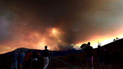 Australische hoofdstad Canberra bedreigd door bosbranden