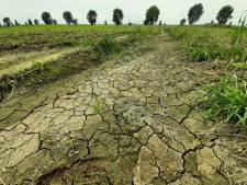 Altena en Heusden steunen boeren in discussie over rampgebied wateroverlast; Waalwijk schrijft géén brief
