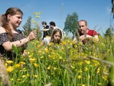 Brugklassers onderzoeken biodiversiteit in opdracht gemeente West-Betuwe