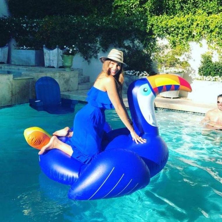 Actrice Sofia Vergara maakt duidelijk dat de flamingotrend passé is. Beeld instagram