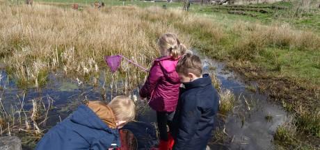 Leerlingen jagen op kikkerdril en waterbeestjes bij Nationale Buitenspeeldag Basisschool Esch