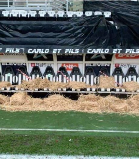 """""""Trop de chèvres, peu de Zèbres"""", la pression monte au Sporting Charleroi"""